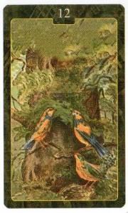 Значение 12 карты ПТИЦЫ из Оракула Ленорман (из книги Маркуса Кац и Тали Гудвин)